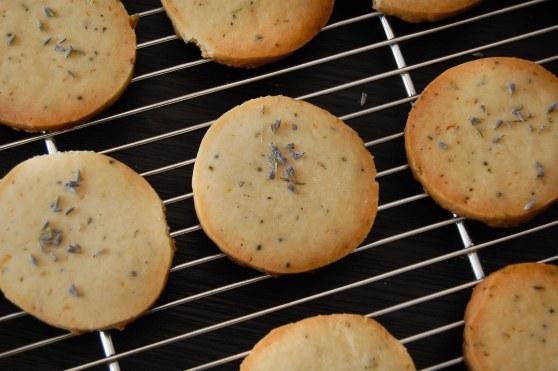 Lavendar Spring Cookies